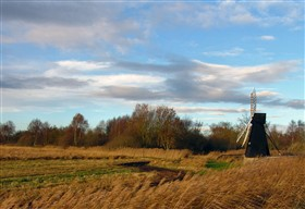 Photo:Wicken Fen